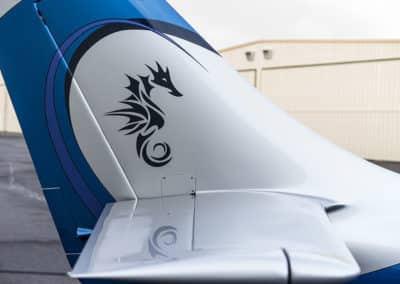 Lancair Legacy Custom Airplane Paint Job